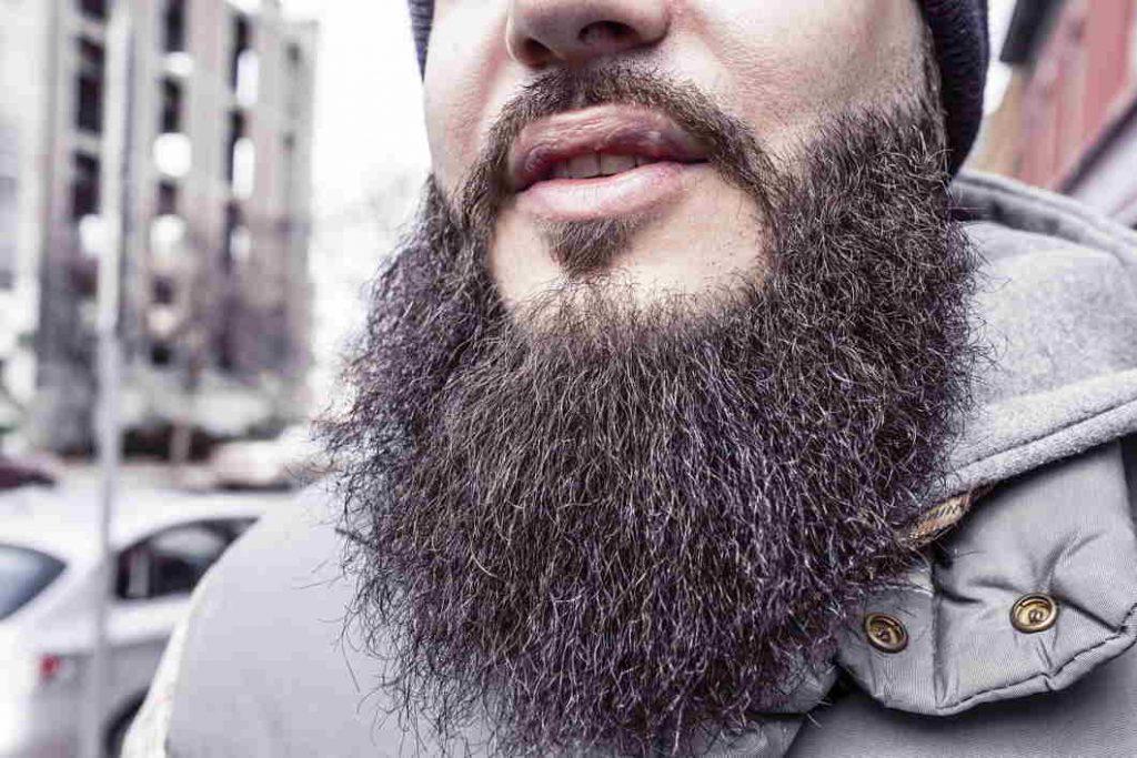 afeitadora recortadora: barba fronsoda