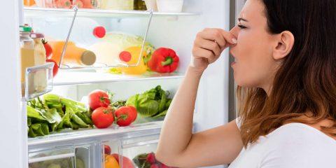 Trucos caseros para eliminar los malos olores de tu frigorífico