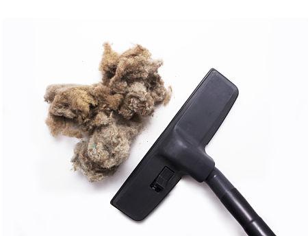 evitar malos olores del aspirador